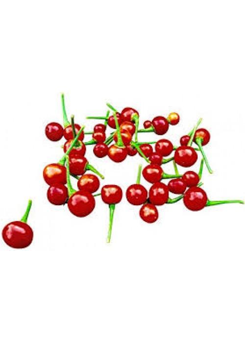Aji charapita red semienka